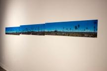 Da série Trajetos – Coqueiros, Panorama em movimento, Dimensão variável, 2015