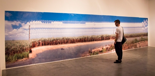"""Da série """"Trajetos - Canavial"""", panorama em movimento, 200x900cm, 2014"""